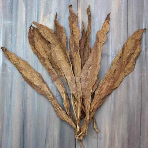 Filler Grade Honduras Habano Cigar Filler Tobacco